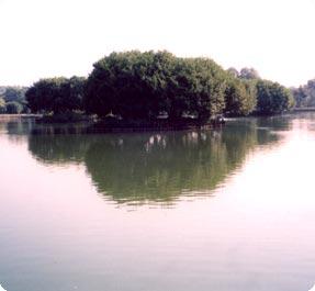 Laghi carcana for Vasche per allevamento trote